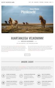Neue Website: Gestüt Wechter Mark geht online